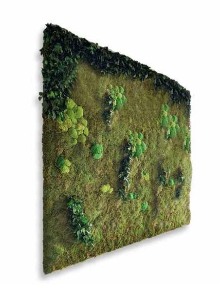 Jardín vertical de plantas preservadas y musgo