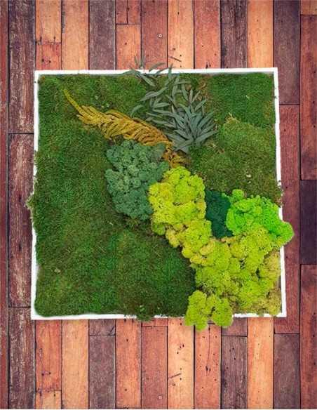 Cuadro de musgo y plantas preservadas sobre fondo madera