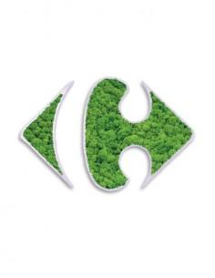 logos con musgo